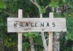 Sommerleir Kragenäs 2019